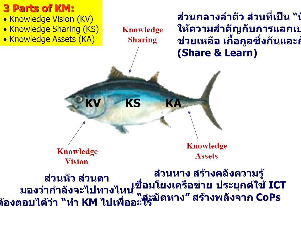 KV KS KA 3 Parts of KM: ส่วนกลางลำตัว ส่วนที่เป็น หัวใจ
