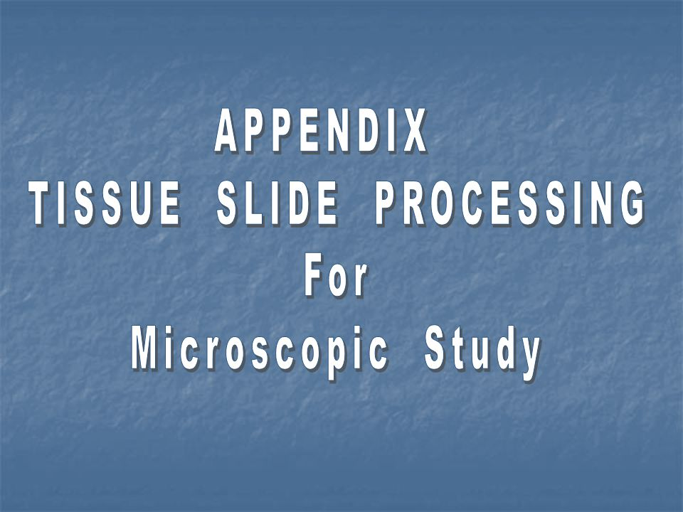 TISSUE SLIDE PROCESSING