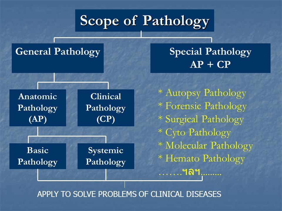 Scope of Pathology General Pathology Special Pathology AP + CP