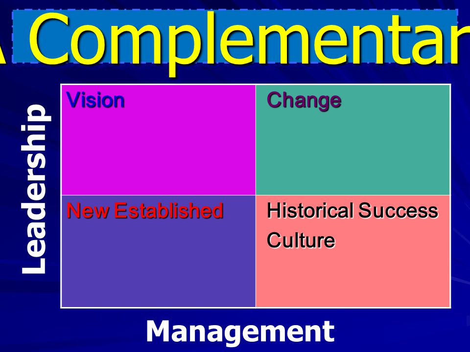 A Complementary Leadership Management Vision Change New Established