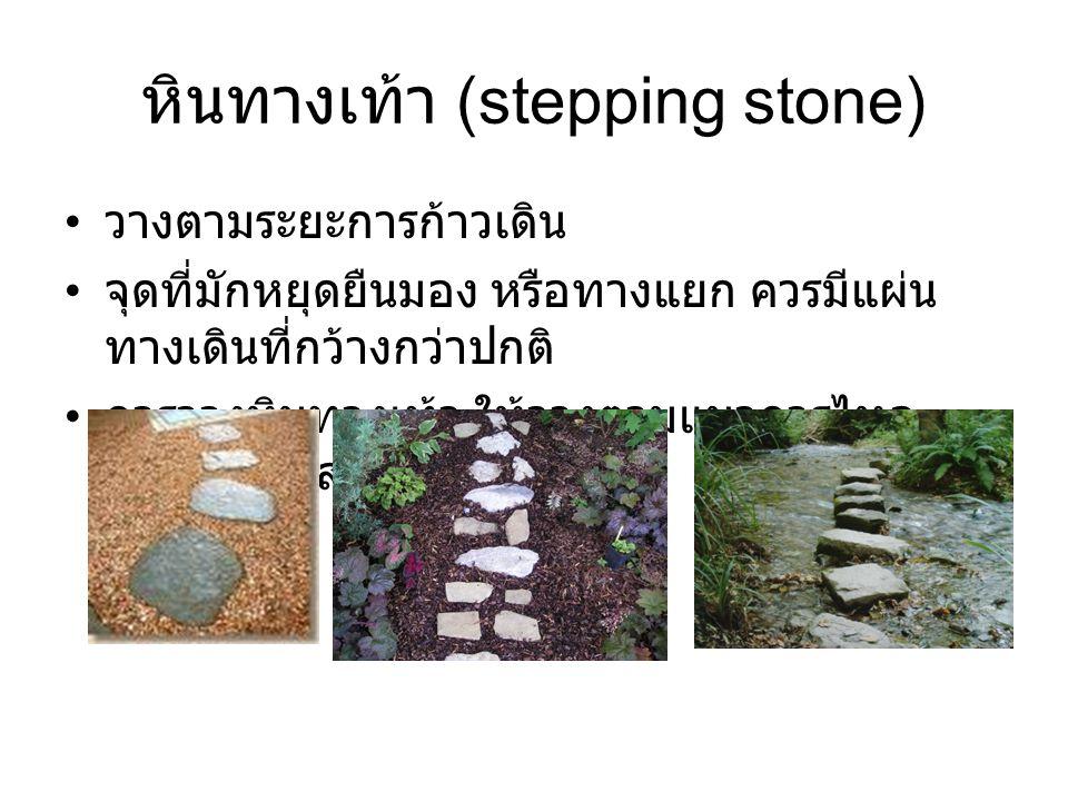หินทางเท้า (stepping stone)