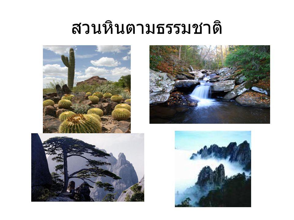 สวนหินตามธรรมชาติ