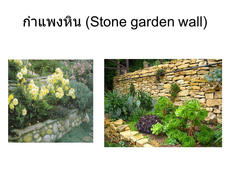 กำแพงหิน (Stone garden wall)