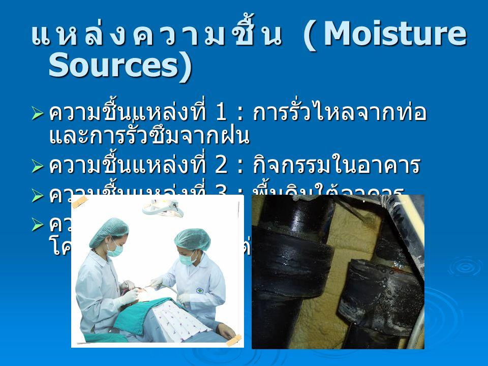 แหล่งความชื้น (Moisture Sources)