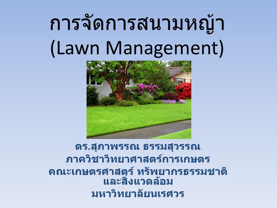 การจัดการสนามหญ้า (Lawn Management)
