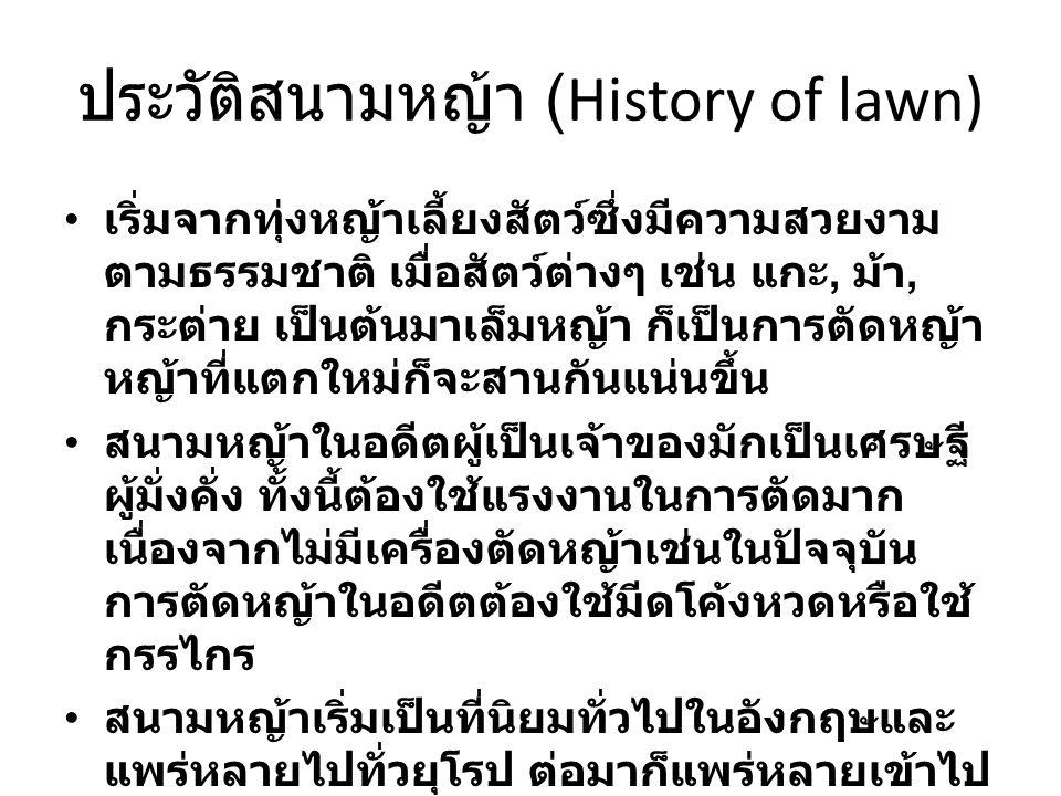 ประวัติสนามหญ้า (History of lawn)