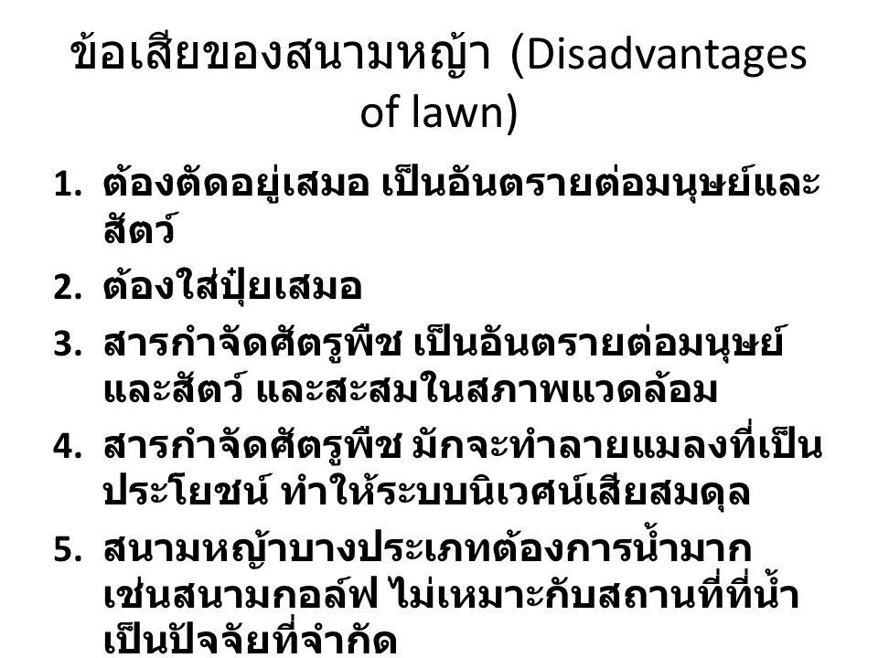 ข้อเสียของสนามหญ้า (Disadvantages of lawn)