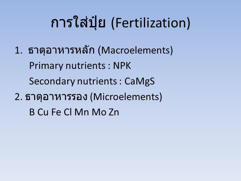 การใส่ปุ๋ย (Fertilization)