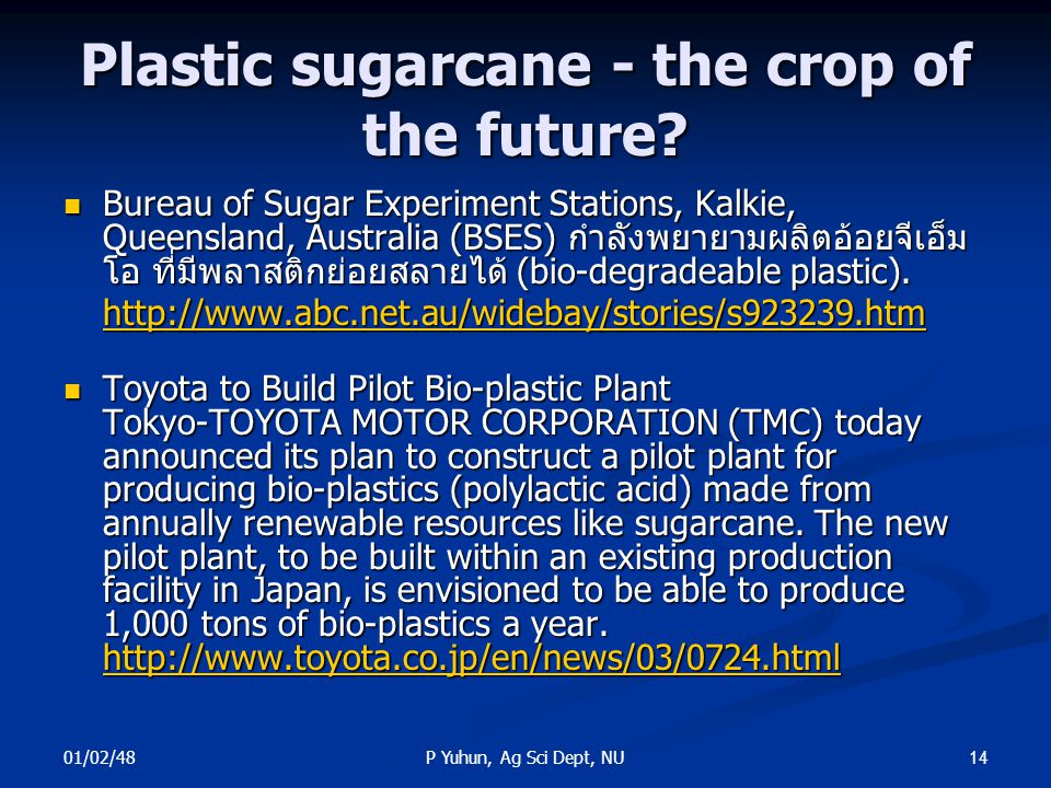 Plastic sugarcane - the crop of the future