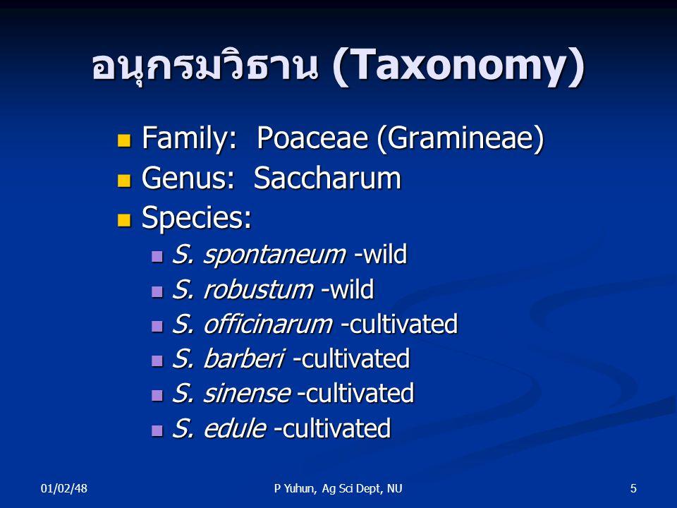 อนุกรมวิธาน (Taxonomy)