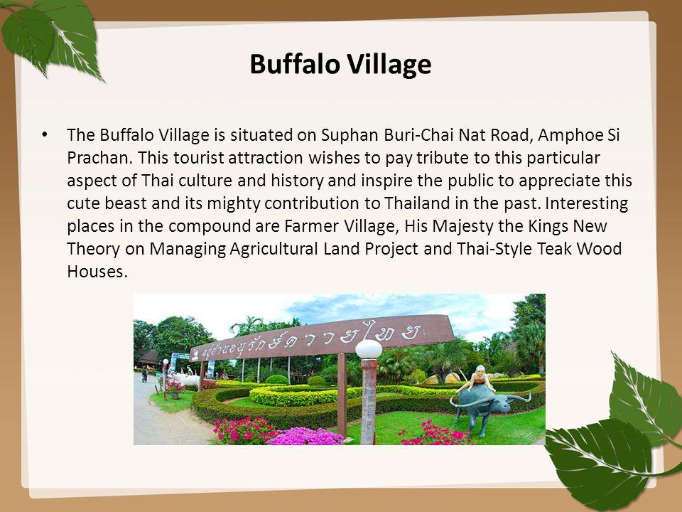 Buffalo Village