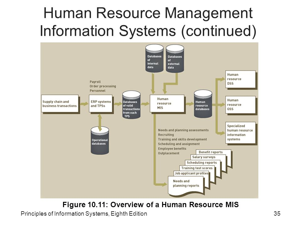 Human Resource Management Information Systems (continued)