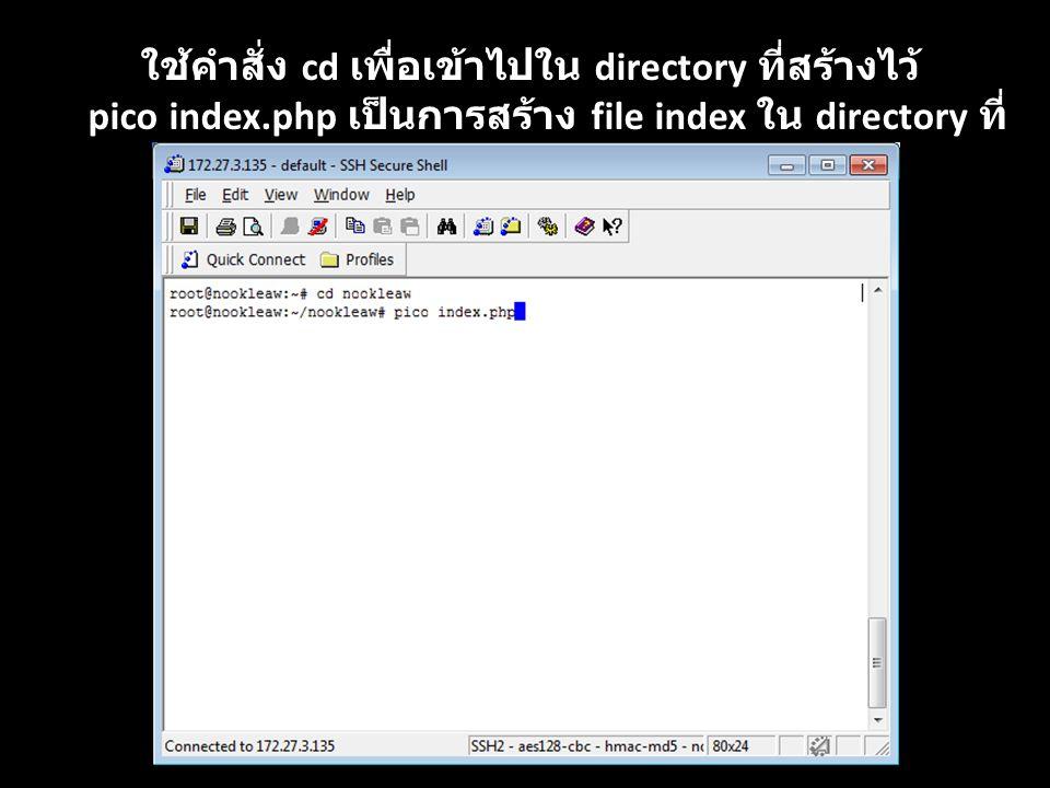 ใช้คำสั่ง cd เพื่อเข้าไปใน directory ที่สร้างไว้ pico index