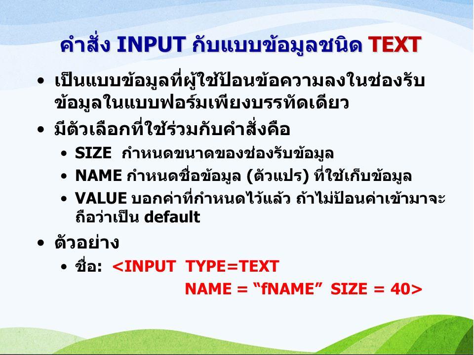 คำสั่ง INPUT กับแบบข้อมูลชนิด TEXT