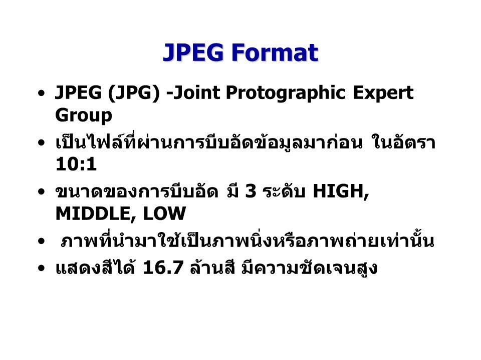 JPEG Format JPEG (JPG) -Joint Protographic Expert Group
