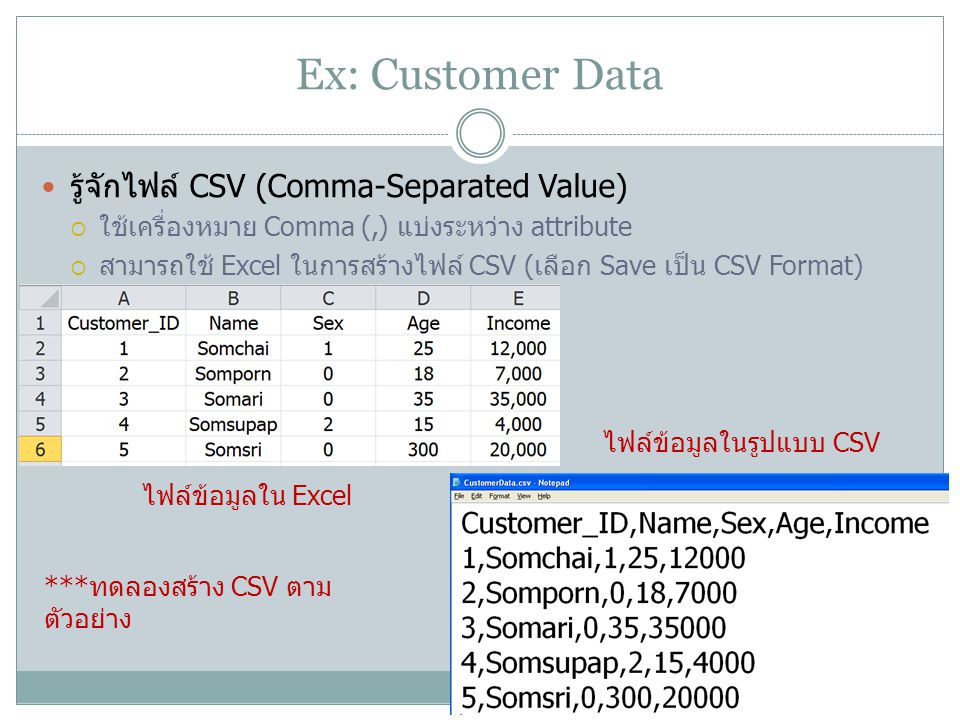 Ex: Customer Data รู้จักไฟล์ CSV (Comma-Separated Value)