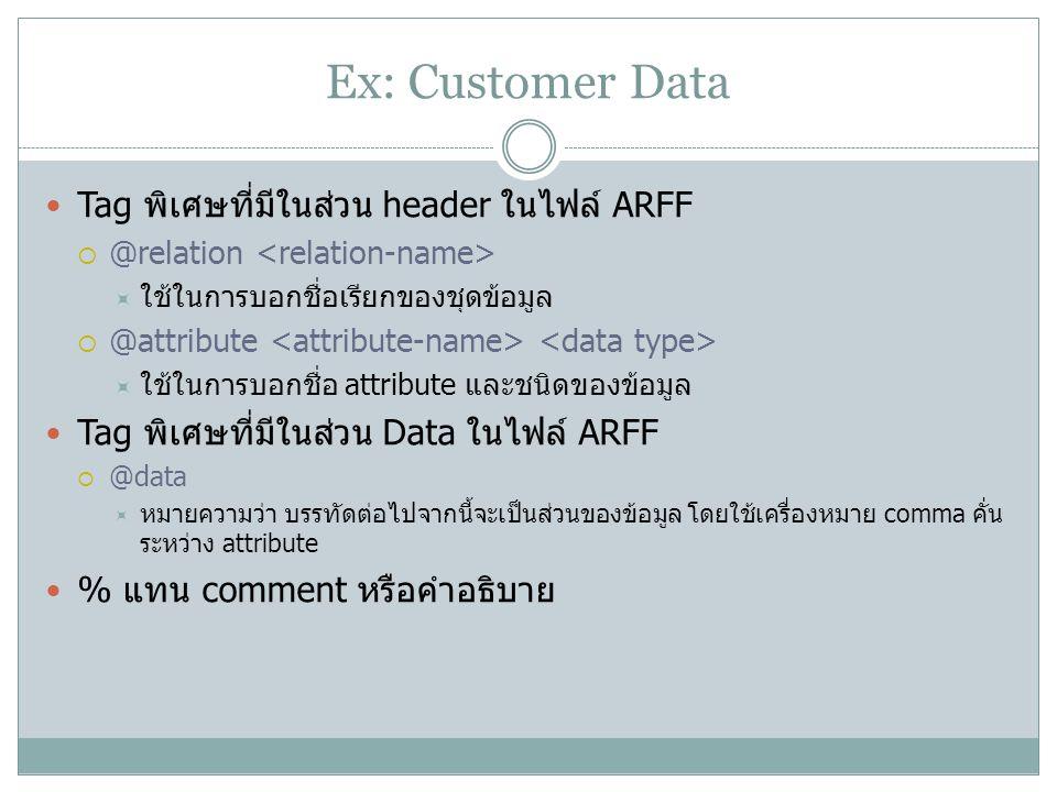 Ex: Customer Data Tag พิเศษที่มีในส่วน header ในไฟล์ ARFF