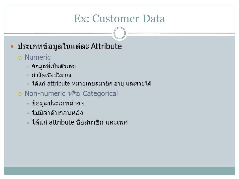 Ex: Customer Data ประเภทข้อมูลในแต่ละ Attribute Numeric