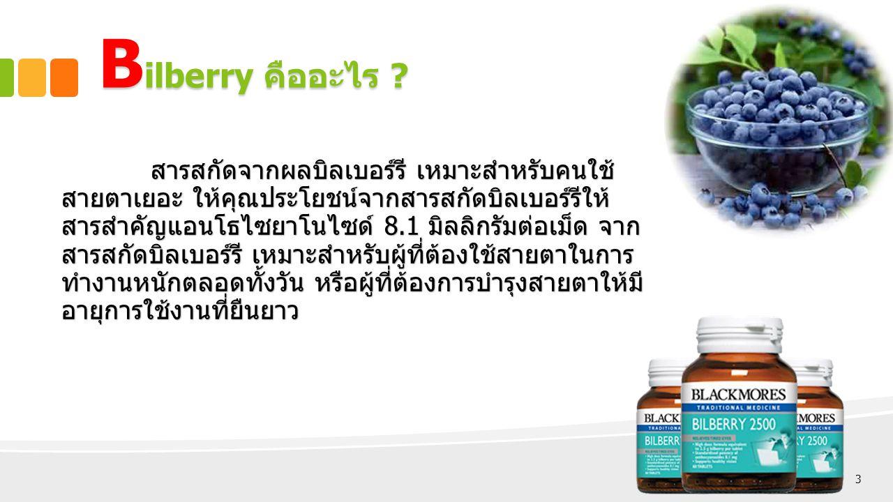 Bilberry คืออะไร