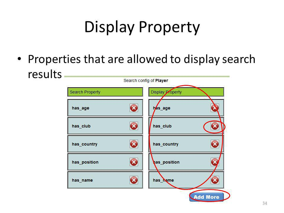 Display Property Properties that are allowed to display search results