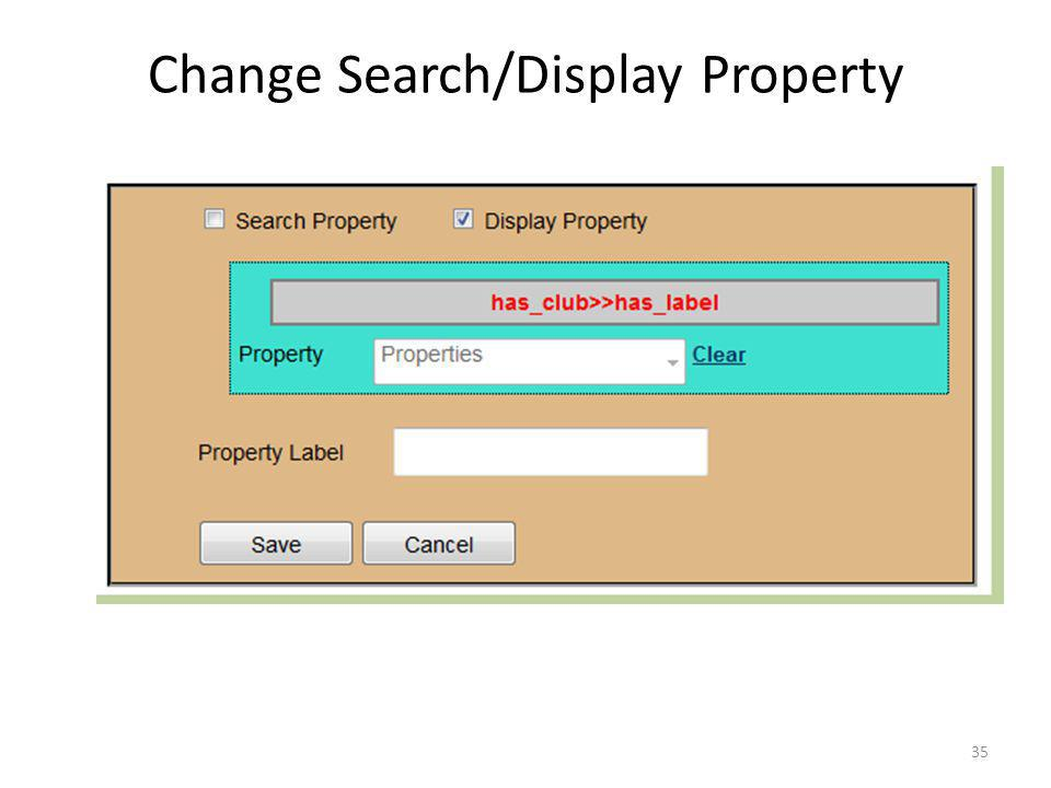 Change Search/Display Property