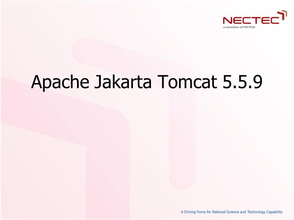 Apache Jakarta Tomcat 5.5.9