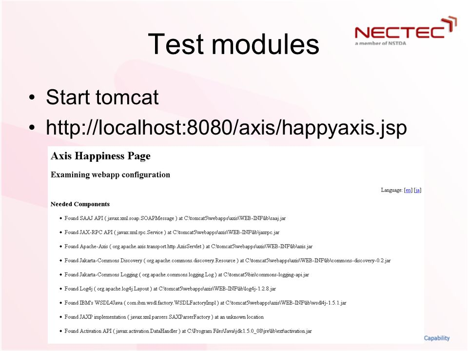 Test modules Start tomcat