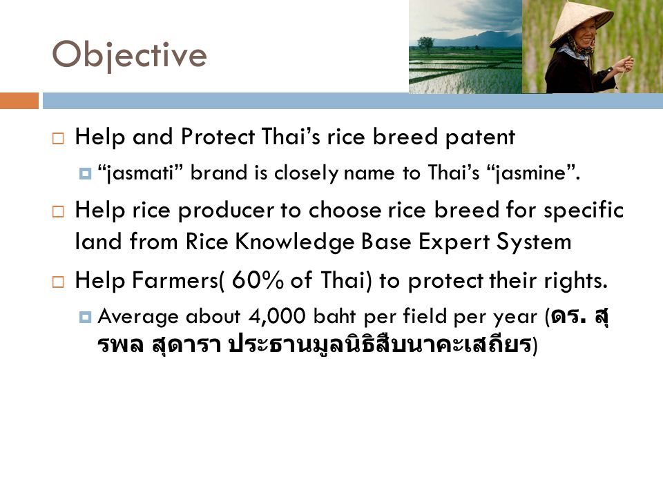 Objective Help and Protect Thai's rice breed patent