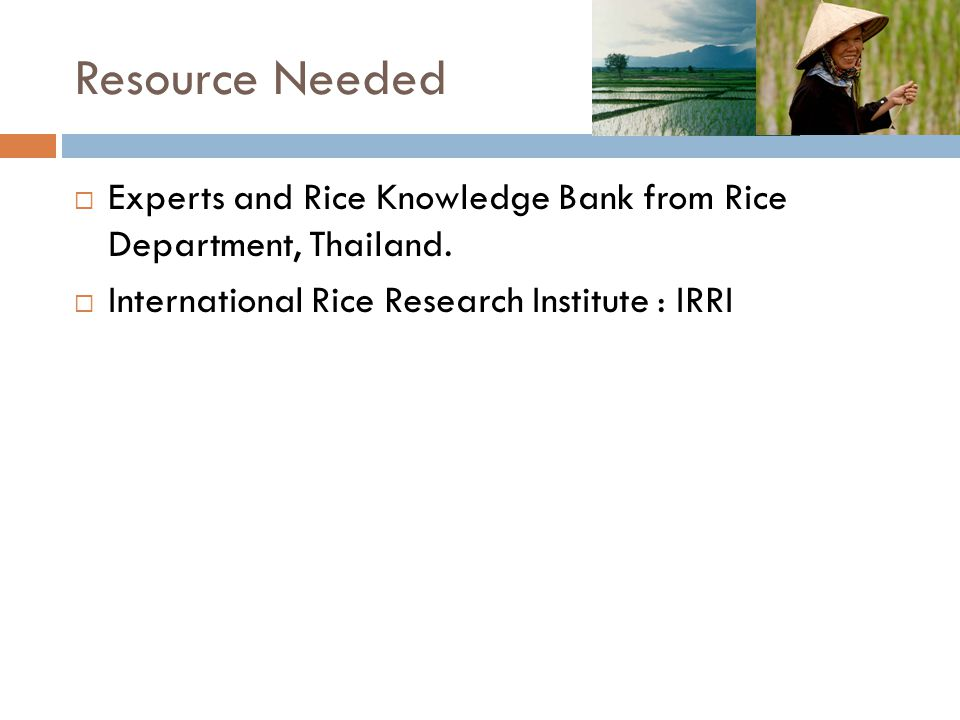Resource Needed Experts and Rice Knowledge Bank from Rice Department, Thailand.