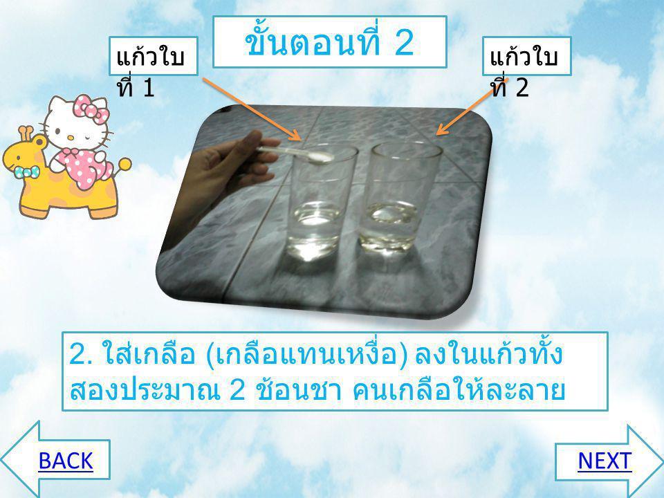 ขั้นตอนที่ 2 แก้วใบที่ 1. แก้วใบที่ 2. 2. ใส่เกลือ (เกลือแทนเหงื่อ) ลงในแก้วทั้งสองประมาณ 2 ช้อนชา คนเกลือให้ละลาย.