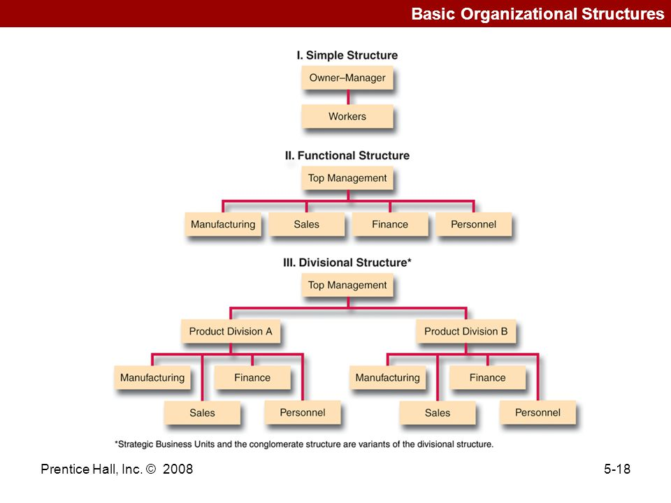 Basic Organizational Structures