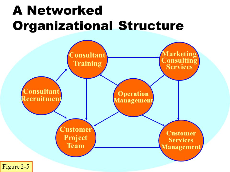 A Networked Organizational Structure