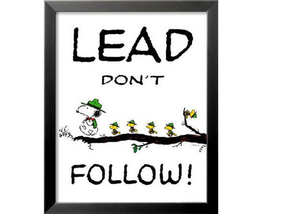 A Project Manage has to lead and manage! No followers need apply!