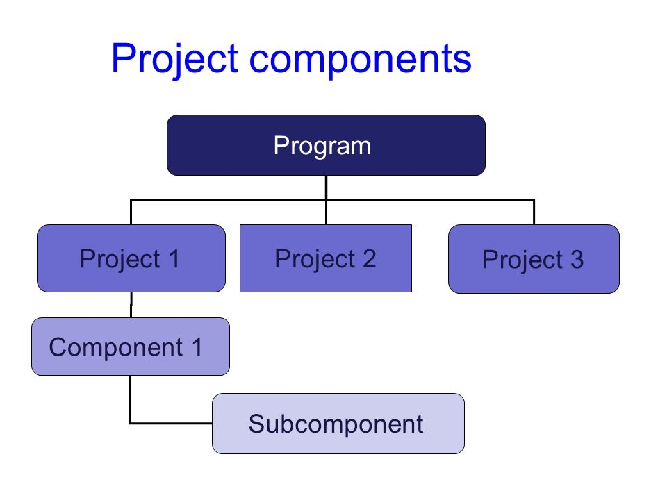 Project components Program Project 1 Project 2 Project 3 Component 1