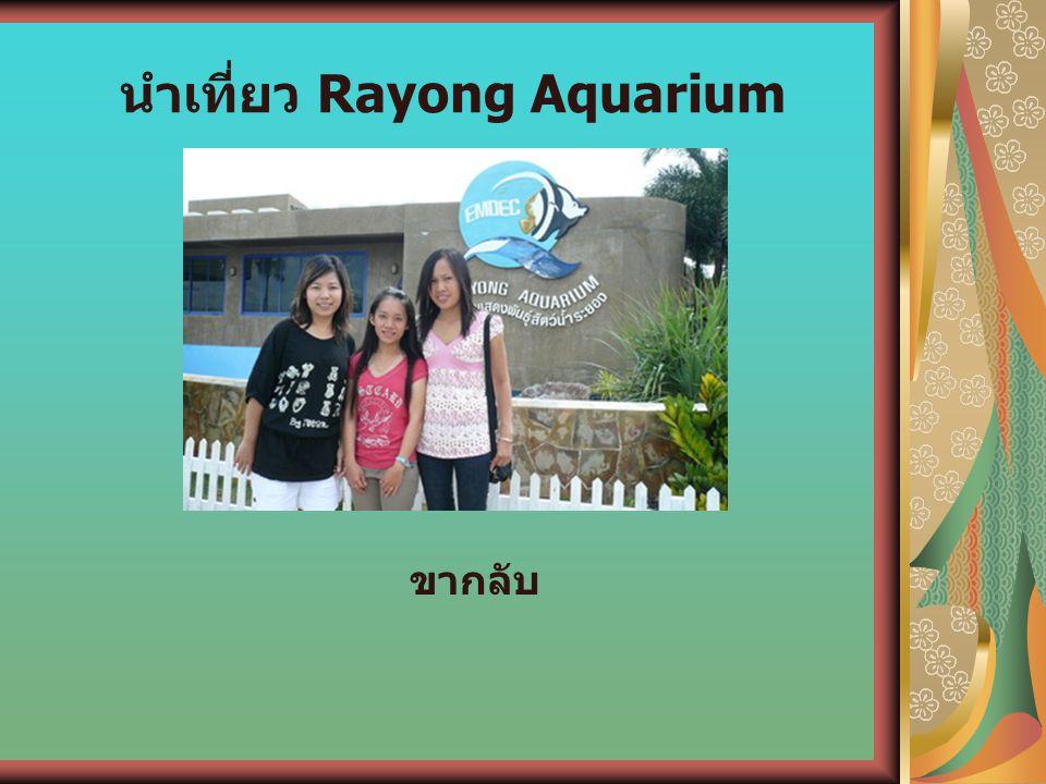 นำเที่ยว Rayong Aquarium