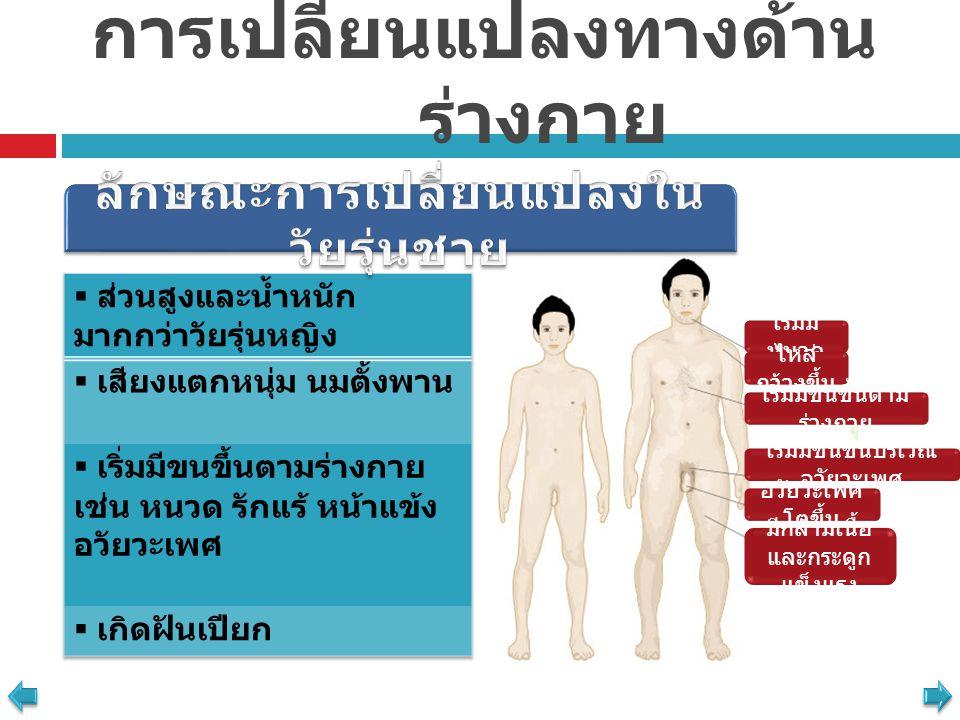 การเปลี่ยนแปลงทางด้านร่างกาย