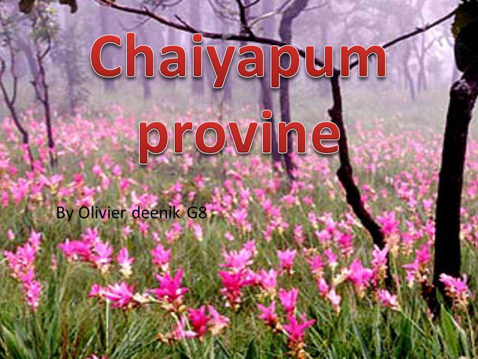 Chaiyapum provine By Olivier deenik G8