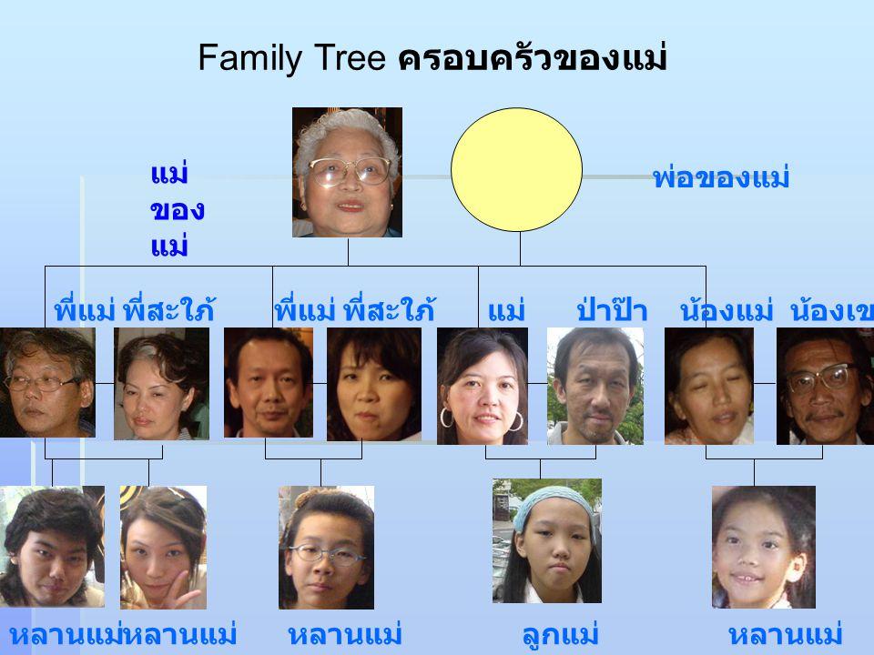 Family Tree ครอบครัวของแม่