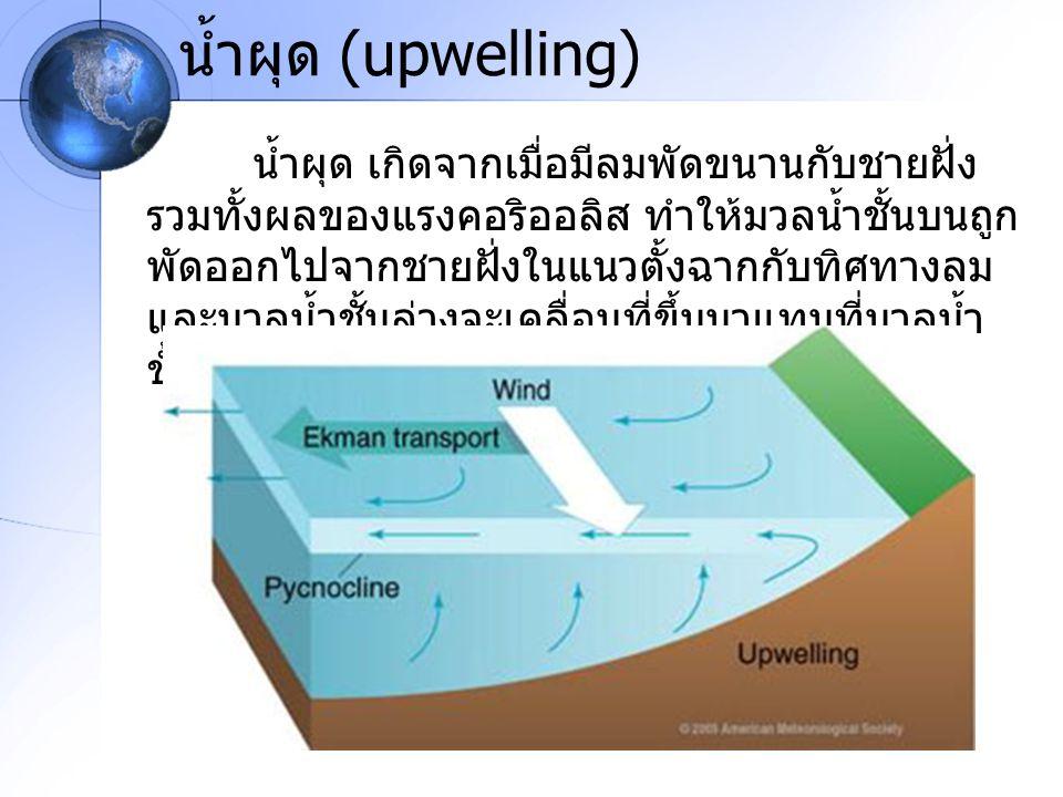 น้ำผุด (upwelling)