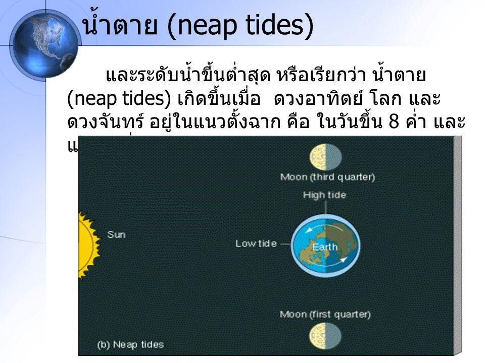 น้ำตาย (neap tides)