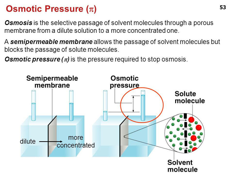 Osmotic Pressure (p)