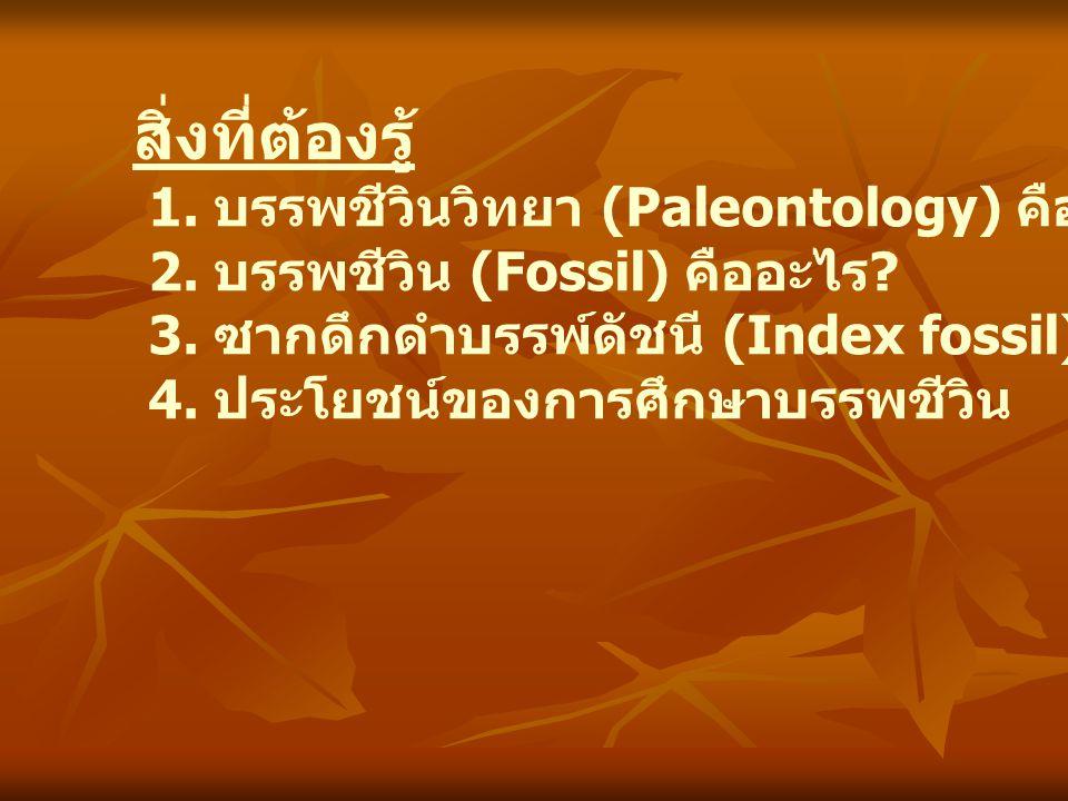 สิ่งที่ต้องรู้ 1. บรรพชีวินวิทยา (Paleontology) คืออะไร