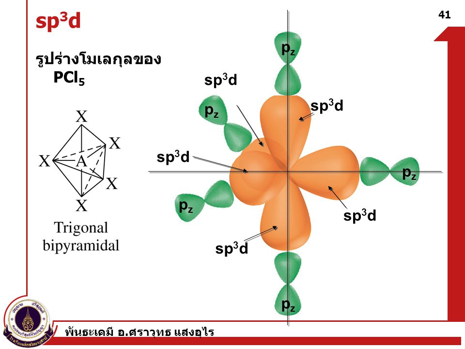 sp3d pz รูปร่างโมเลกุลของ PCl5 sp3d sp3d pz sp3d pz pz sp3d sp3d pz