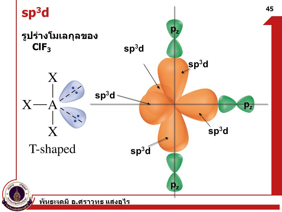 sp3d pz รูปร่างโมเลกุลของ ClF3 sp3d sp3d sp3d pz sp3d sp3d pz