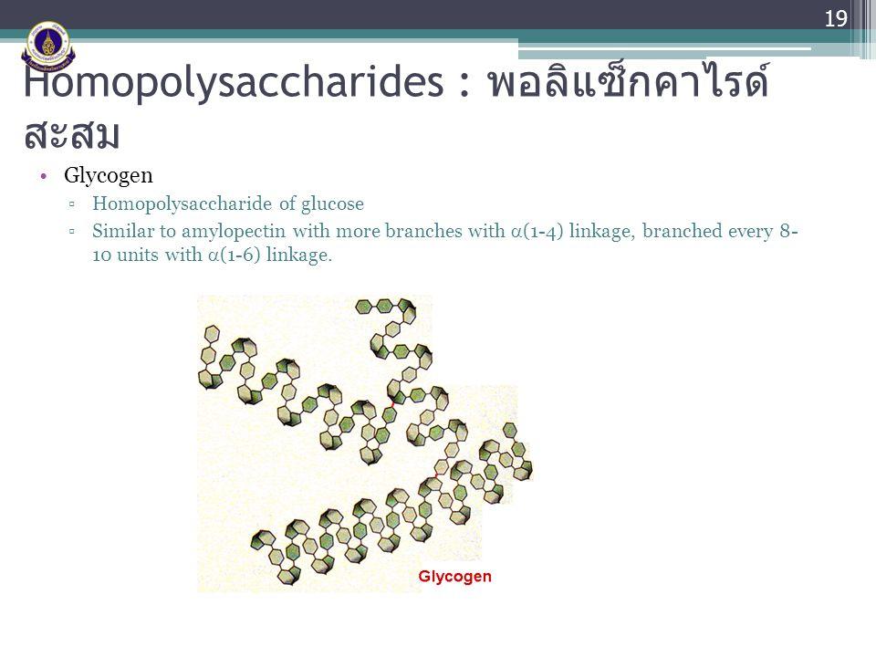 Homopolysaccharides : พอลิแซ็กคาไรด์สะสม