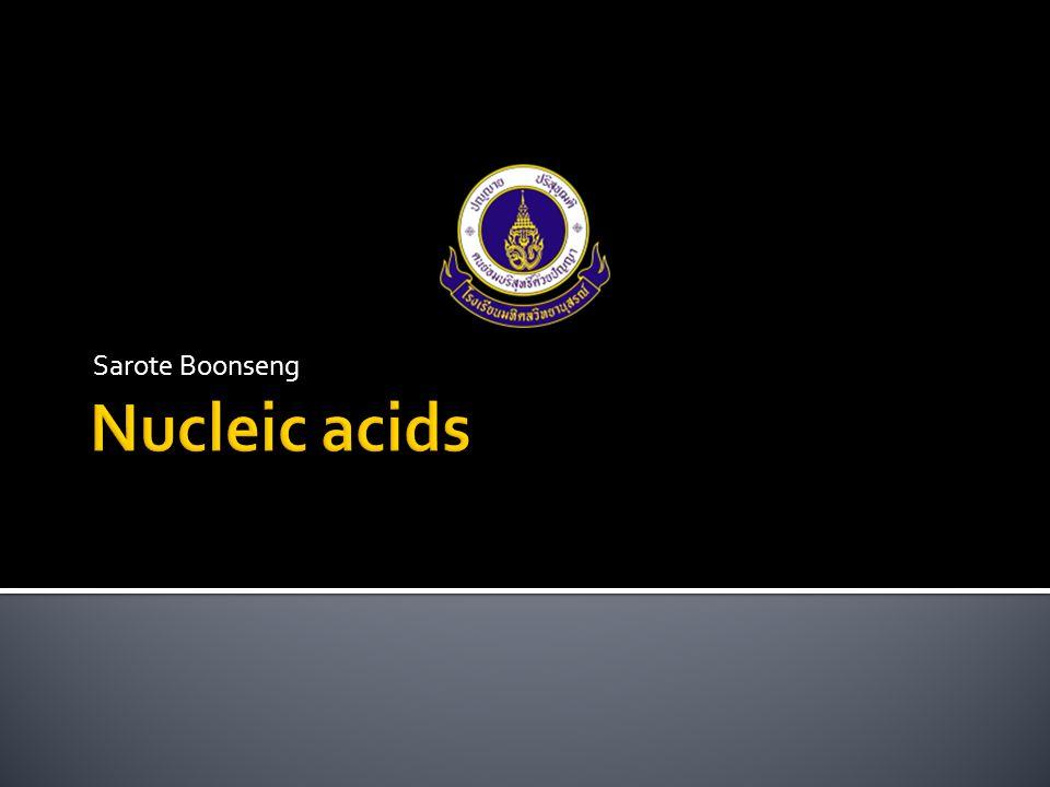 Sarote Boonseng Nucleic acids