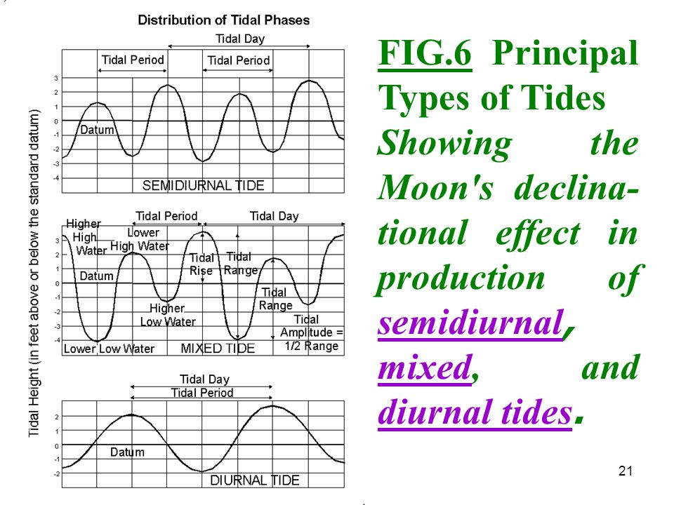 FIG.6 Principal Types of Tides