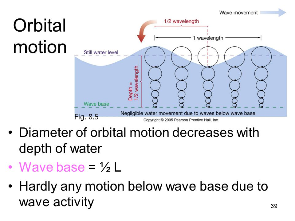 Orbital motion Fig. 8.5. Diameter of orbital motion decreases with depth of water. Wave base = ½ L.