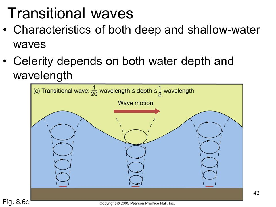 Transitional waves Characteristics of both deep and shallow-water waves. Celerity depends on both water depth and wavelength.
