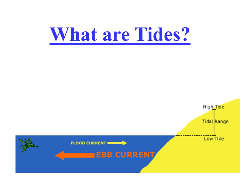 What are Tides